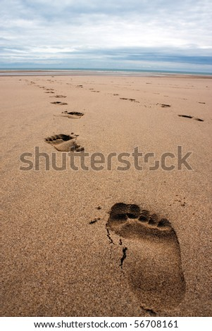 A row of footprints in the sand on a beach in the summertime