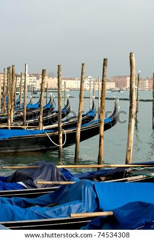 A row of gondolas near St Mark's Square, Venice, Italy