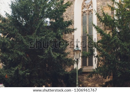 a row of green coniferous trees near the gray wall of a concrete building. #1306961767