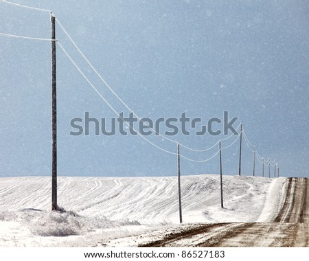 A row of ice covered power lines along a lonely country road.