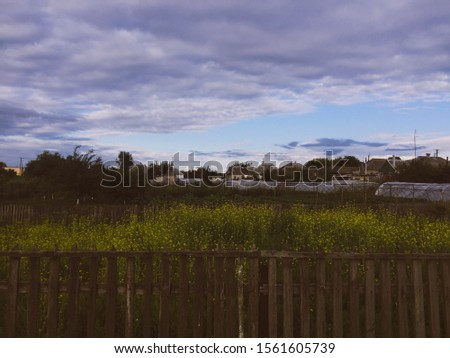 A rural fence and rural garden #1561605739