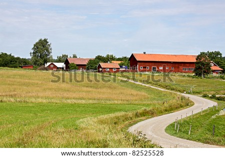 A rural road to a farm in Sweden. farm
