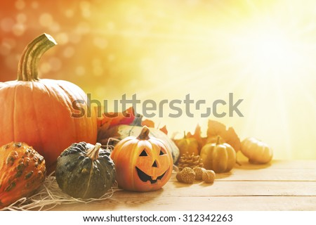 A rustic autumn still life with pumpkins, a small Jack O'Lantern and golden leaves on a wooden surface. Bright sunlight coming in from behind.