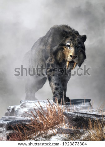 A saber tooth cat with long fur emerges from from the fog on a snowy winter day. This is smilodon fatalis, the best known of saber toothed big cats. It lived during the last ice age. 3D Rendering