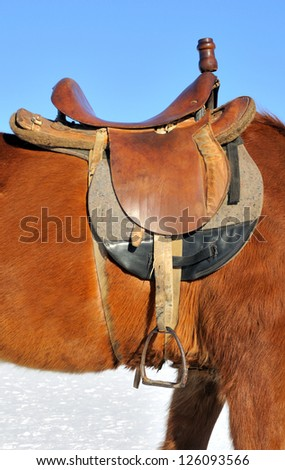 A saddle on the horse