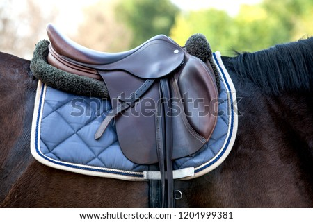 A saddle saddled on the back of a sport horse