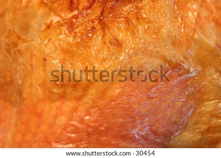 a sample section of a thanks giving turkey's golden cooked skin fresh from the oven and ready to be carved up and served to family and friends