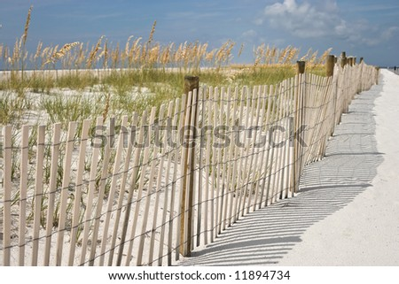 A sand fence, dunes and sea oats at the beach. Interesting soft background and shadows pattern