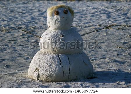 A sandman snowman on the beach