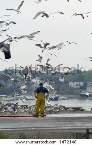 A scene taken on the waterfront wharfs in Portland, Maine.