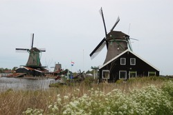 A scenic look at Holland's traditional windmills in rural parts of the Hague. A dutch flag, a grassland, parts of river and wild flowers are seen in the composition