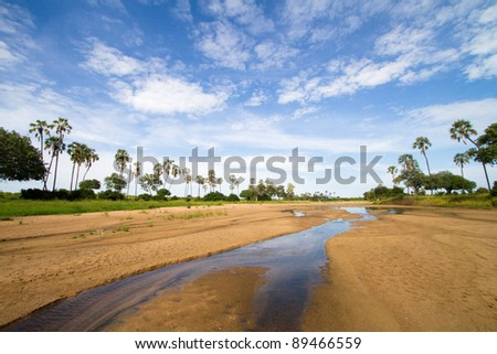 A scenic riverbed in Ruaha National Park, Tanzania