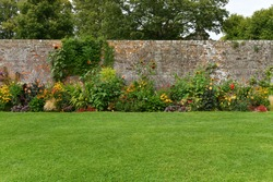 A Scenic View of a Beautiful English Style Landscape Garden with a Green Mowed Lawn, Colourful Flower Bed and  Weathered Redbrick Wall