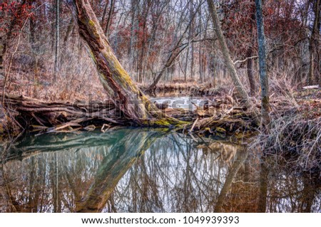 A scenic view of a stream in a Missouri wilderness area. #1049939393