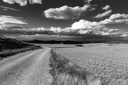 A scenic view of an unpaved road in the countryside in grayscale