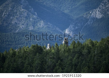 A scenic woodland and a mountain range in Cadi-Moixero Natural Park Zdjęcia stock ©