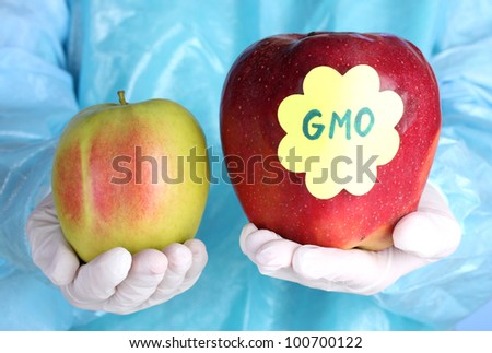 A scientist holds a genetically modified apple