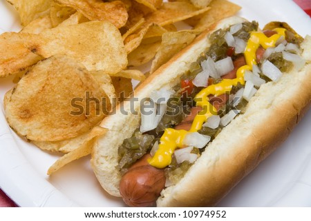 A scrumptious barbecued hotdog with relish, onions, mustard, ketchup and potato chips rests on a picnic table waiting to be consumed.