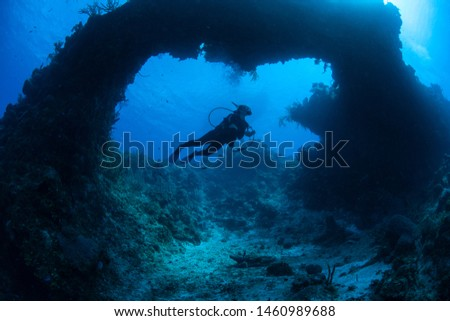 A scuba diver explores a submerged natural arch formed on a coral reef off the coast of Grand Cayman in the Caribbean Sea. This beautiful area is a popular destination for divers and snorkelers. #1460989688