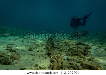 A scuba diver in the Aegean Sea off the coast of Greece.