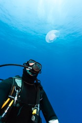 A SCUBA diver looks at a Moon jelly in deep water