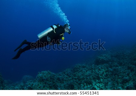 a scuba diver profile swimming on reef