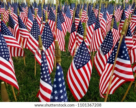 A Sea of American Flags, American Holiday Spirit; Military, Holidays, Independence, Memorial, Veteran, Vietnam and Patriotism Ideas  #1101367208