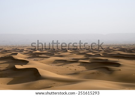 A sea of sand dunes in the Sahara desert in Erg Chegaga in Morocco front of a forest that is far in the horizon behind the mist in the spring during a hot sunny day.