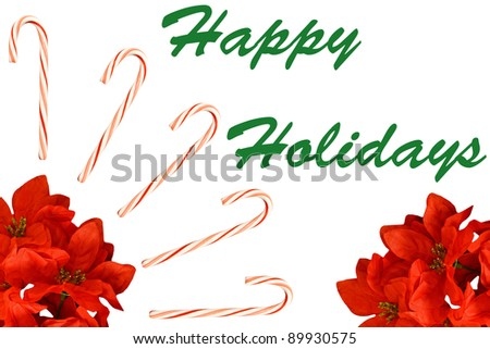 A seasonal Christmas Holiday decoration of candy canes and poinsettia plants isolated on white with room for your text.