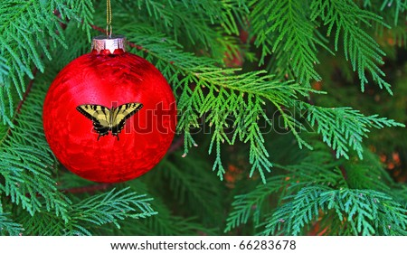 A Seasonal holiday Christmas Ball with a Butterfly design on it hanging in a live Christmas tree with room for your text.