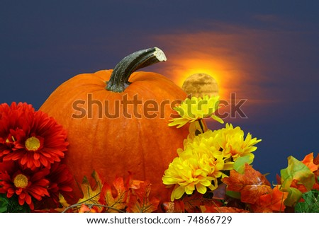 A seasonal holiday thanksgiving Pumpkin setting amongst the flowers with a fire red glowing fall moon in the background night sky with room for your text.
