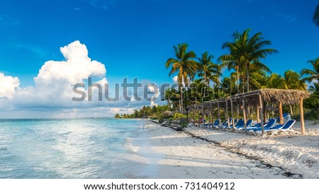 A seat in front of the Caribbean sea. Beautiful beach of Cayo Gulliermo, in Cuba, next to the coral reef, with palm trees and long chairs where to chill out enjoying the breeze and the sun.