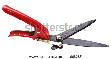A secateurs (garden pruner) with a red handle isolated on a white background