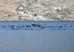 A secluded fishermen village in Musandam, Oman. Only means of transportation is by boat..