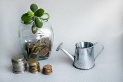 A seedling grows out of a glass jar with coins. A sprout grows in the jar. On the table are stacks of coins, a glass jar and a small toy watering can.