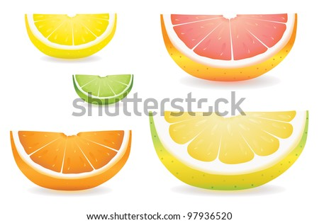 A selection of citrus fruit slices in proportional sizes. Illustrated are lemon, lime, orange, pink grapefruit and pomelo fruit.