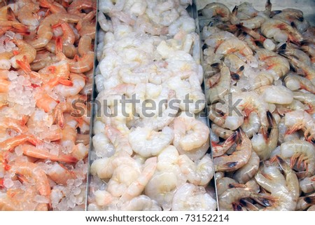 A selection of shrimp at a fish market