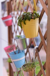 A selective focus vertical shot of a colorful bucket flower pot with different plants on a wooden criss-cross fence