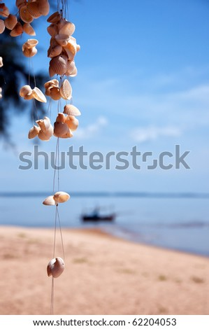 A selectively focused image of strings of seashells against a backdrop of a tropical beach.