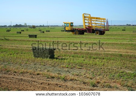 A self-propelled wagon gathers up hay bales in a California alfalfa field