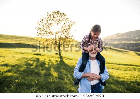 A senior grandfather giving a small granddaughter a piggyback ride in nature. Foto stock ©