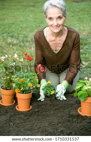 A senior woman gardening on a spring day
