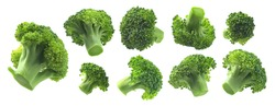 A set of broccoli. Isolated on a white background
