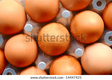 A set of brown eggs in a plastic tray