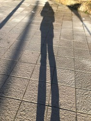 A shadow of people with the morning light.