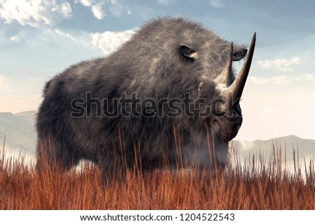 A shaggy beast emerges from the mists of time. This is the Woolly Rhino, Coelodonta Antiquitatis, a species of rhinoceros that existed during the last Ice age. 3D Rendering