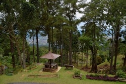 A sheltered picnic table on Bukit Larut (Maxwell Hill), with alpine trees and Taiping city view from the hill edge.