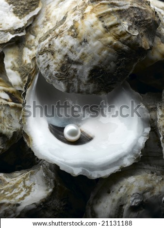 A shiny pearl in an oyster shell
