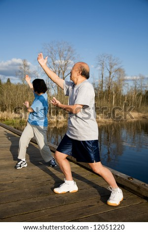 A shot of a senior asian couple practicing taichi exercise