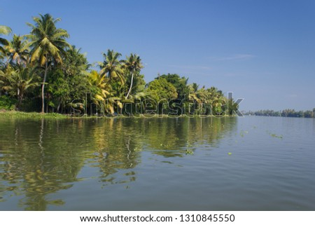 A shot of coconut trees and shrubs on the banks of backwaters of Alleppey, Kerala taken on bright sunny day with clear blue sky and reflection in water symmetrically visible in the shot & blank space. #1310845550